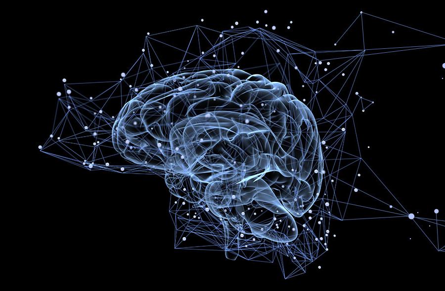 Voici le nouveau mode d'emploi de votre cerveau pour gérer l'incertitude